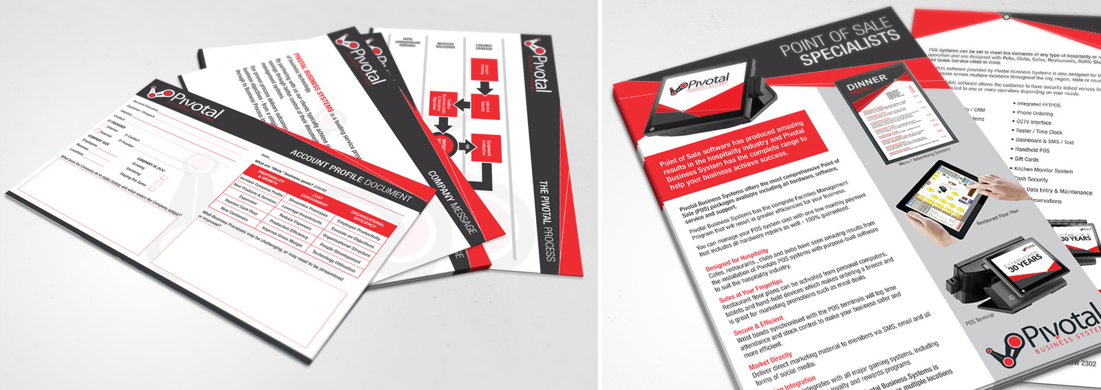 Pivotal Business Systems Promotional Design